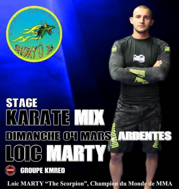 Stage karaté Mix